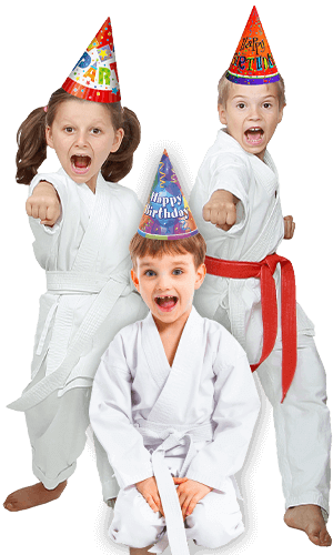 Martial Arts Birthday Party for Kids in Allen TX - Birthday Punches Page Banner